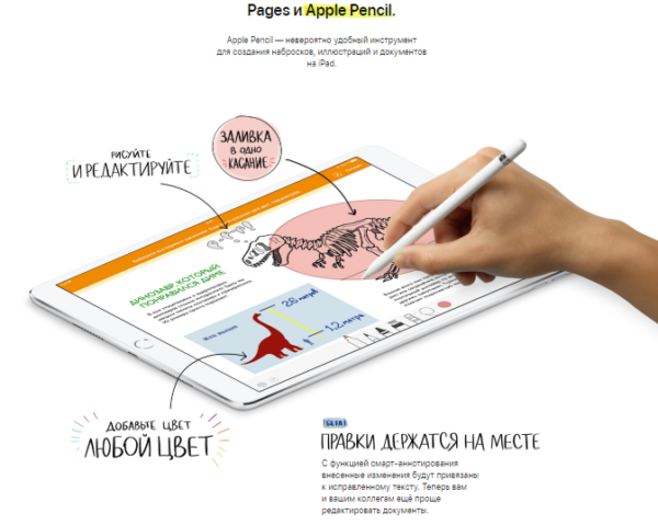 Совместимость Page и Apple Pensil