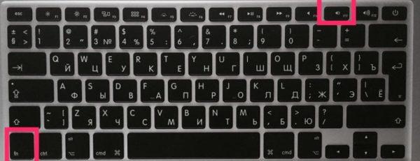 Комбинация клавиш Function + F11