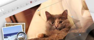 Как обрезать фотографию на Mac в программе Просмотр