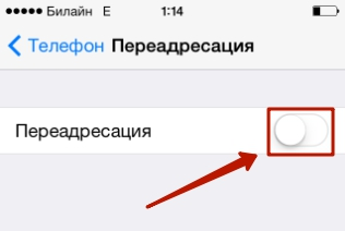 Раздел «Переадресация» в настройках Phone