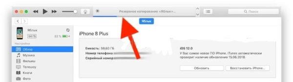 Сохранение резервной копии iPhone вiTunes