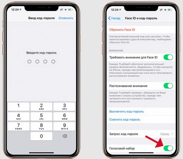 Отключение опции «Голосовое управление» на iPhone с кнопкой «Домой»