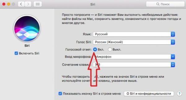 почему Siri не зачитывает текст